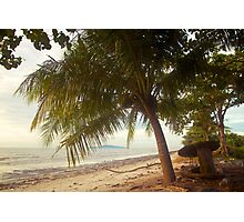 Landscape | Beach | Coconut Tree Photographic Print