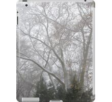 Park During Heavy Snowfall In Winter In Bucharest, Romania iPad Case/Skin