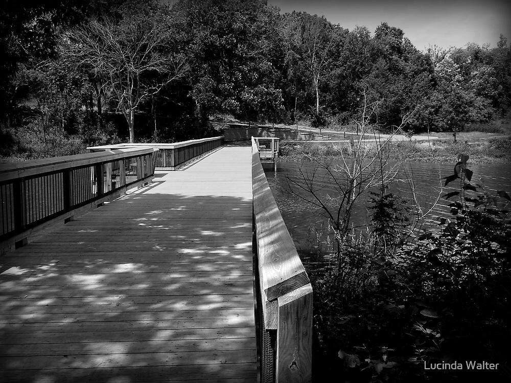 Bridge Across the Lake by Lucinda Walter