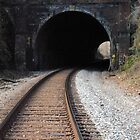 Henryton Tunnel by Robin Lee