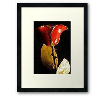 Gilded Rose Framed Print