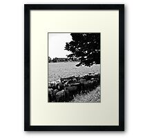 Salvation from the Sun Framed Print