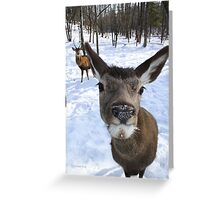 And What? You Think You Belong Here? Greeting Card