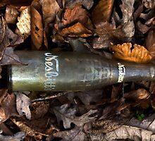 Old Bottle by cadman101