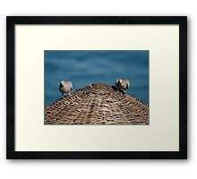 A Pair Of Doves On A Woven Sun Parasol Framed Print