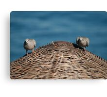 A Pair Of Doves On A Woven Sun Parasol Canvas Print
