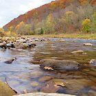 Greenbriar River, Cass, West Virginia by hubcap