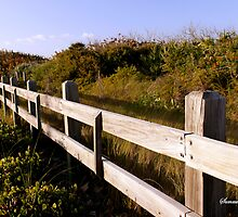 Fence along the Beach Dune by SummerJade