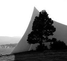 Vietnam Veterans Memorial Chapel and Tree by John Attebury