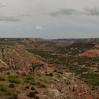 Palo Duro Canyon Panorama by John Attebury