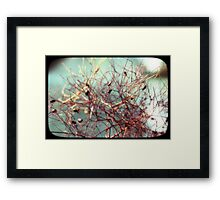 The closest inspection Framed Print