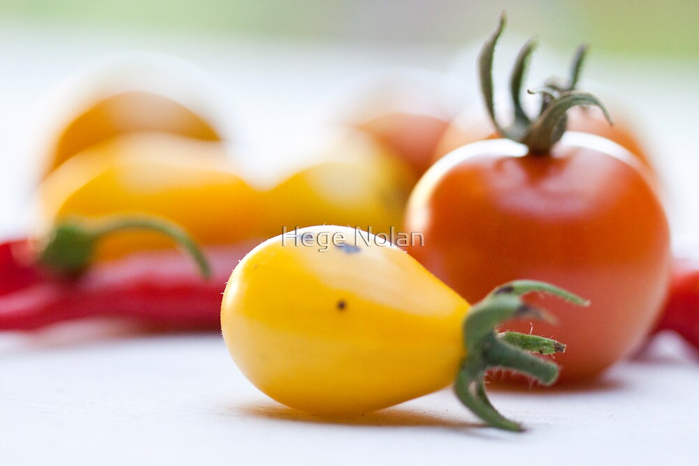 first harvest by Hege Nolan