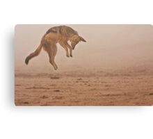 Flying in fog Canvas Print