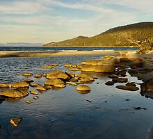 Captain Cook Creek in late setting sun - Bruny Island, Tasmania by PC1134