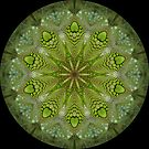 Lizard Kaleidoscope 05 by fantasytripp