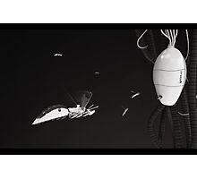 WaspBot - Hi tech nature series  (sci-fi) Photographic Print