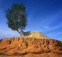 My Island - Lake Mungo by Hans Kawitzki