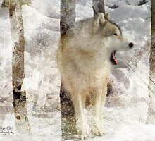 Wild call by Olga