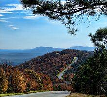 Beautiful Talimena Drive by Carolyn  Fletcher