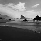 Shark Fins - Oregon Coast by JimBremer