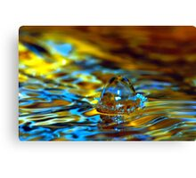 water drop 001 Canvas Print