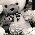 Creepy Cuddlies by joerelic37