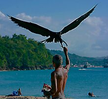 The Man and the Seabirds 6 by Turtle6