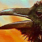 Crow by artstoreroom
