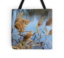 Water Brush Tote Bag