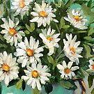 Daisy #4 by Cathy Amendola