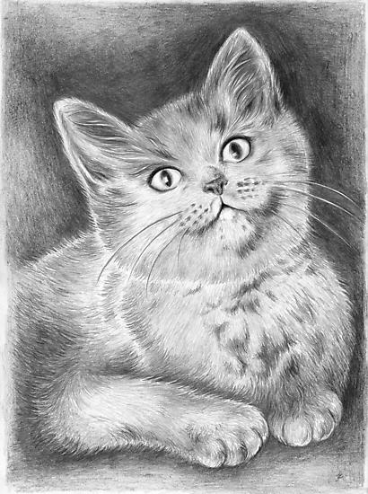 Kitty by jankolas