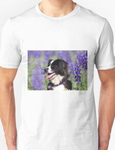 dog in a field of Blue lupin (Lupinus pilosus) flowers  Unisex T-Shirt