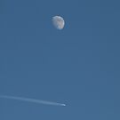 Plane Old Moon by Sian Houle