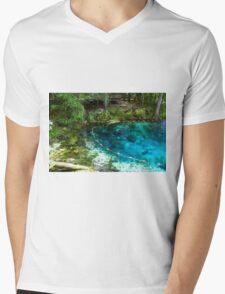 Spring Life Mens V-Neck T-Shirt