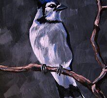 Blue Jay by Rachelle Dyer