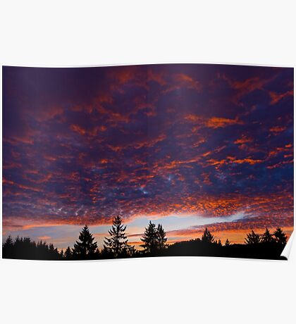 New Year Sunset Poster