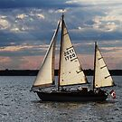 An Evening Sail! by Rose Landry