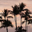 Kona Evening by amyhoover