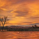Frozen Pond Sunset by Nolan Nitschke