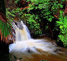 hawaiian botanical gardens by PJS15204