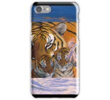 Siberian Sunset iPhone Case/Skin