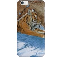 Snow Break iPhone Case/Skin