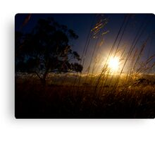 The Earth, Tree and Sky Canvas Print