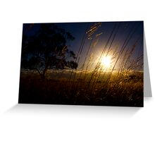 The Earth, Tree and Sky Greeting Card