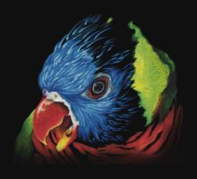 Rainbow Lorikeet Shirt by jewlecho