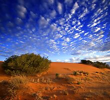 Desert Dunes by Ian Beattie