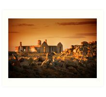 Farina Ruins, South Australia Art Print
