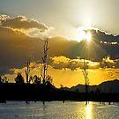 Somerset Sundown by Beth  Wode