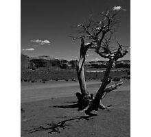 Desert Shadows Photographic Print