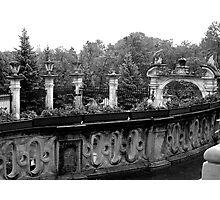 the forgotten garden Photographic Print